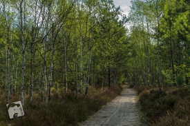 grabicz maj-7633