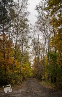 jesień w Grabiczu-8478