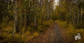 jesień w Grabiczu-8500