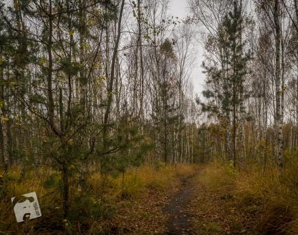 jesień w Grabiczu-8502