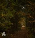 jesień w Grabiczu-8512