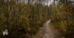 jesień w Grabiczu-8513