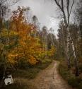 jesień w Grabiczu-8529