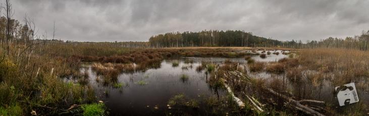 jesień w Grabiczu-