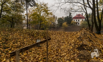 park przy muzeum-9091
