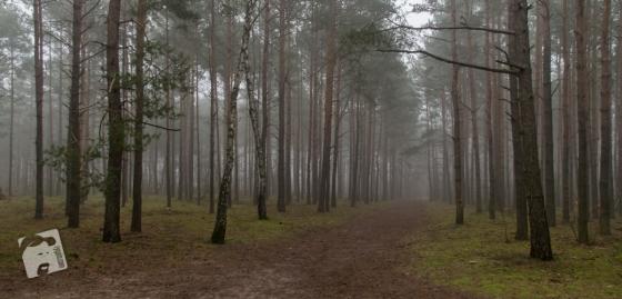 mgławica Grabicz-2591