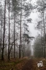 mgławica Grabicz-2594