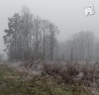 grabicz luty 2018-5101
