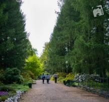 Pgród Botaniczny PAN w Powsinie-0781