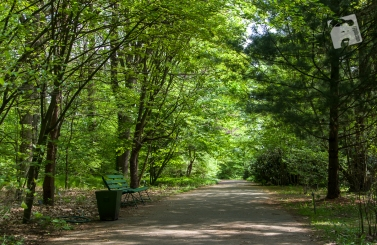 Pgród Botaniczny PAN w Powsinie-0782