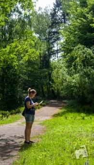 Pgród Botaniczny PAN w Powsinie-0809