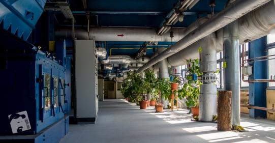 Zakład Energetyki Cieplnej w Wołominie-3066