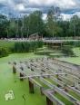 park przy Muzeum Nałkowskich-4987