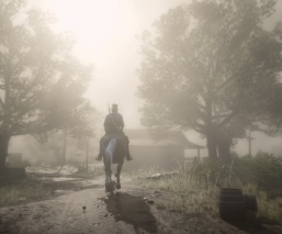 Red Dead Redemption 2_20181127112659