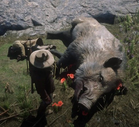 Red Dead Redemption 2_20181205095439